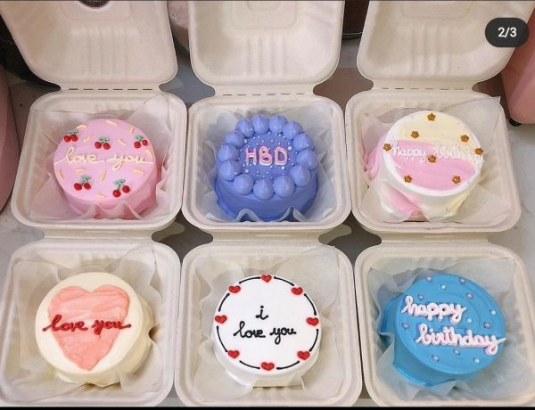 cach-lam-banh-bento-cake